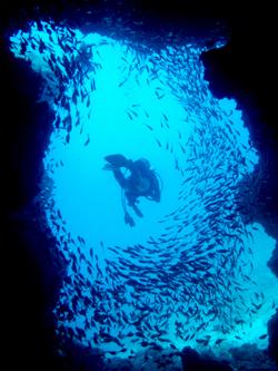 沖縄本島で人気のダイビングスポット 万座ドリームホール