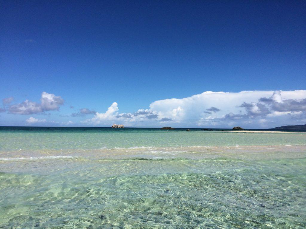 沖縄の海がキレイな理由