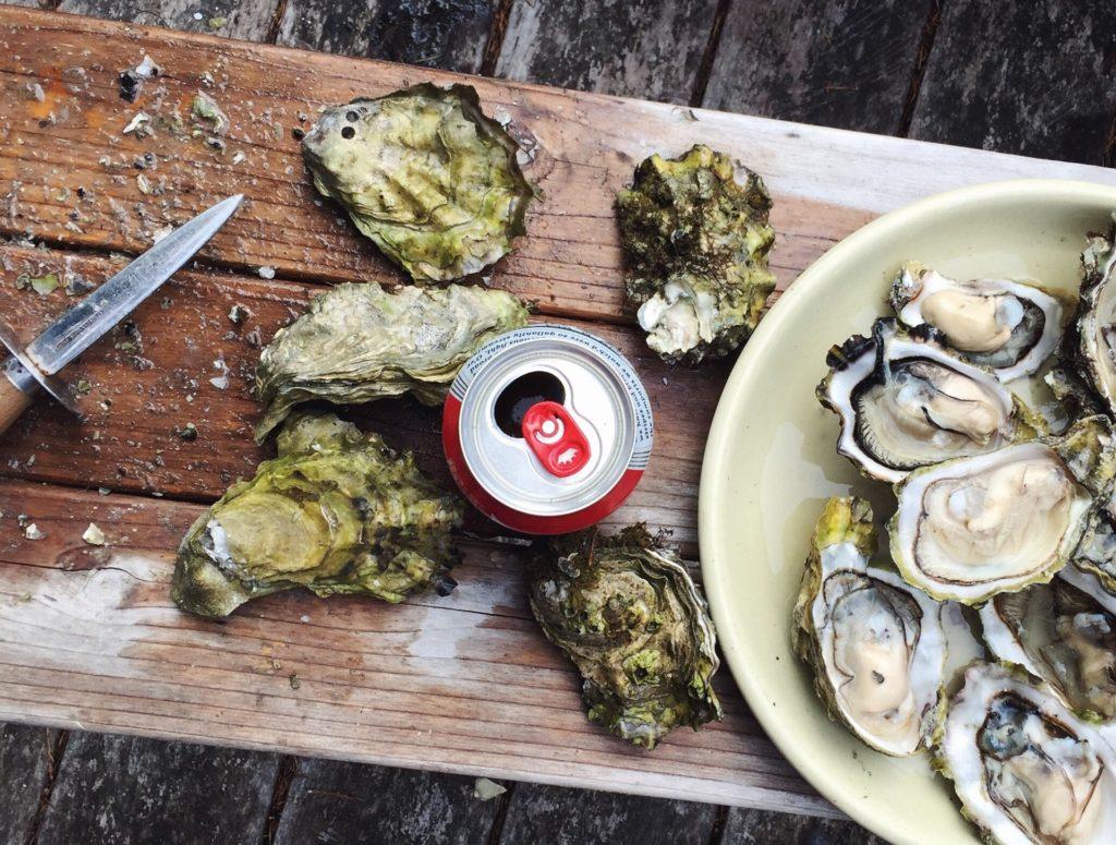 広島の牡蠣の魅力
