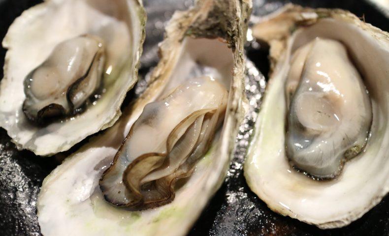生産量№1!広島の牡蠣があんなにも美味しいのは何故!?