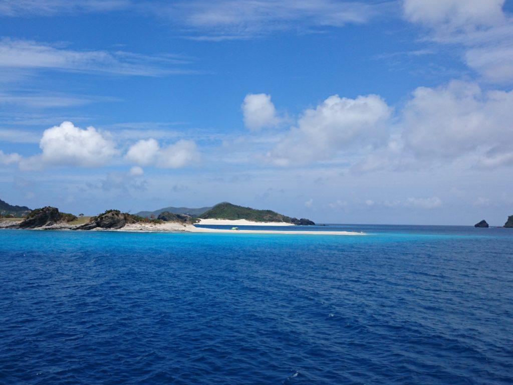 慶良間諸島の海でダイビング