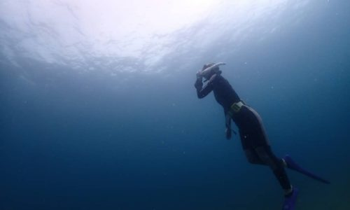 ダイビング 事故